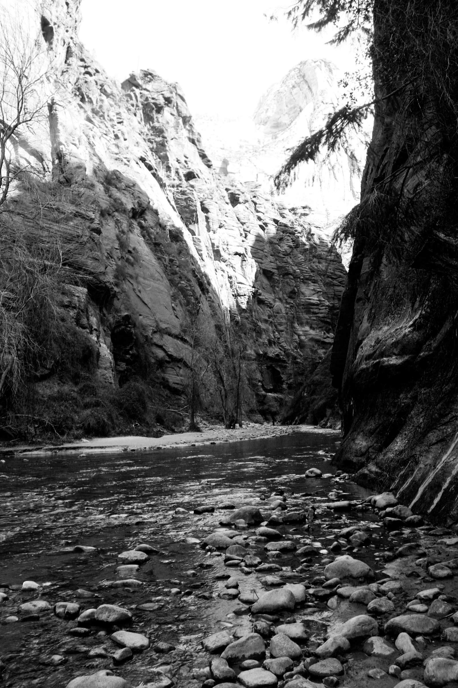 Zion National Park, UT 2014