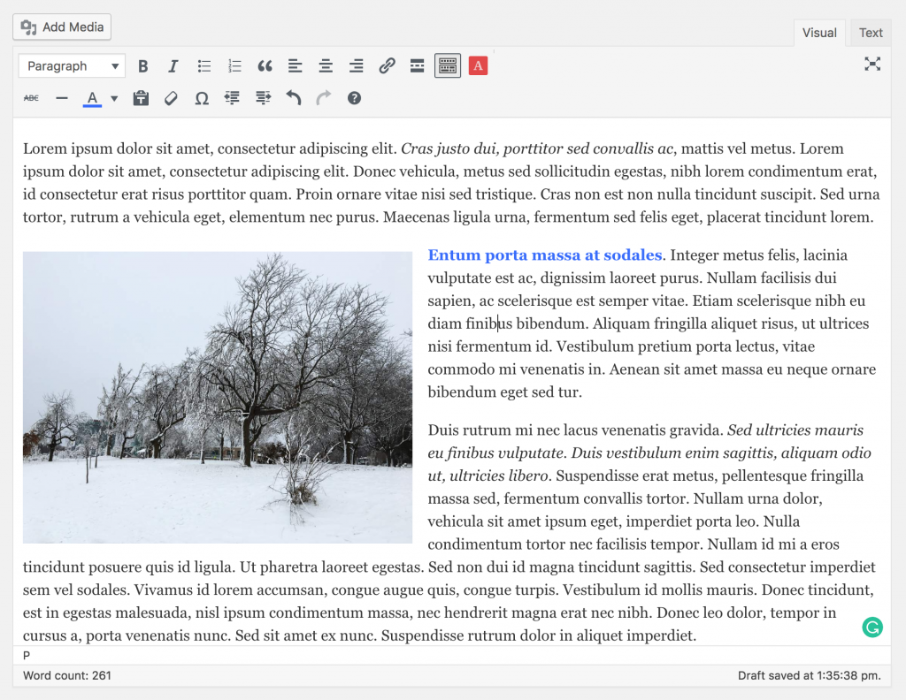 wysiwyg editor screenshot example